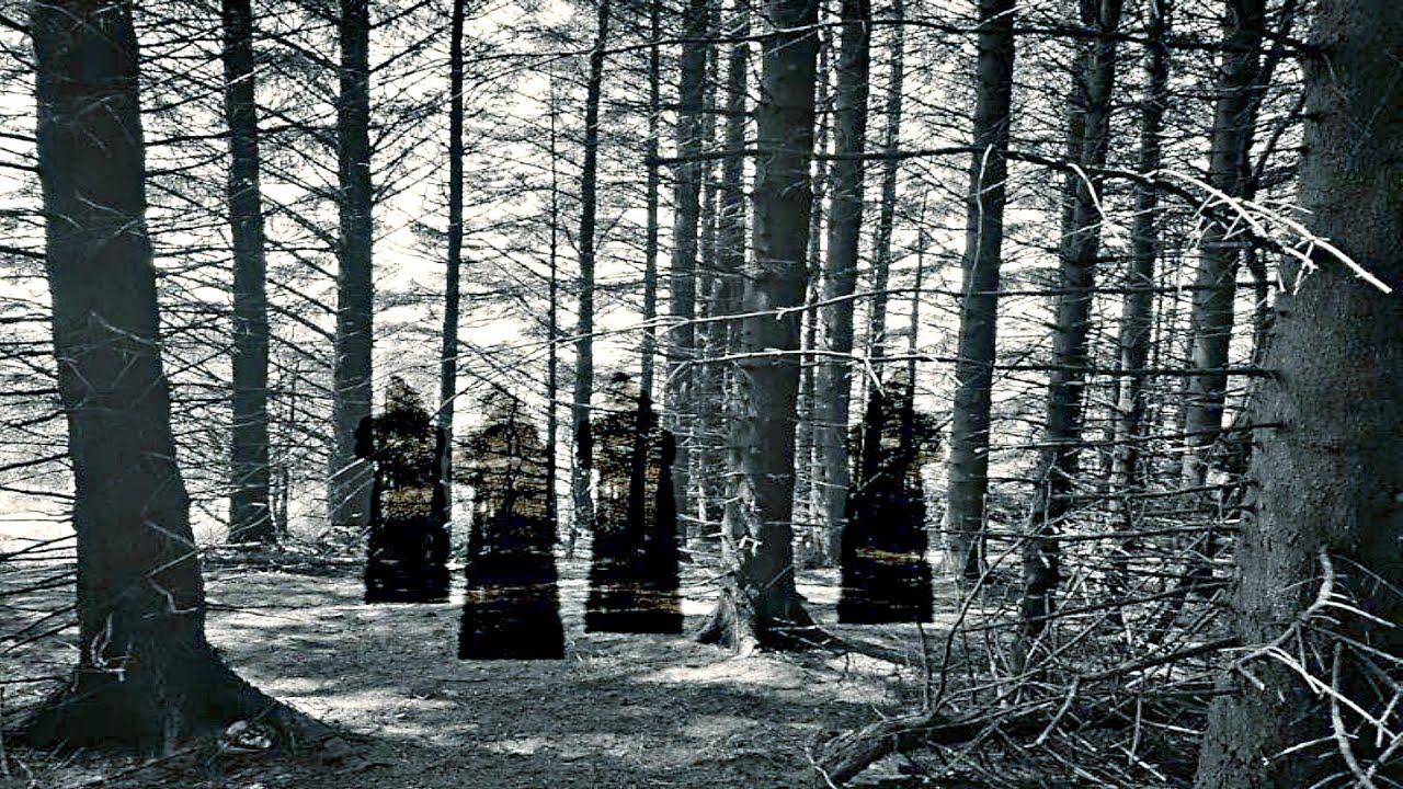 Ormanda Dolaşırken İLLUMİNATİ RİTÜELİNE Şahit Oldum ! ( Sizden Gelenler )