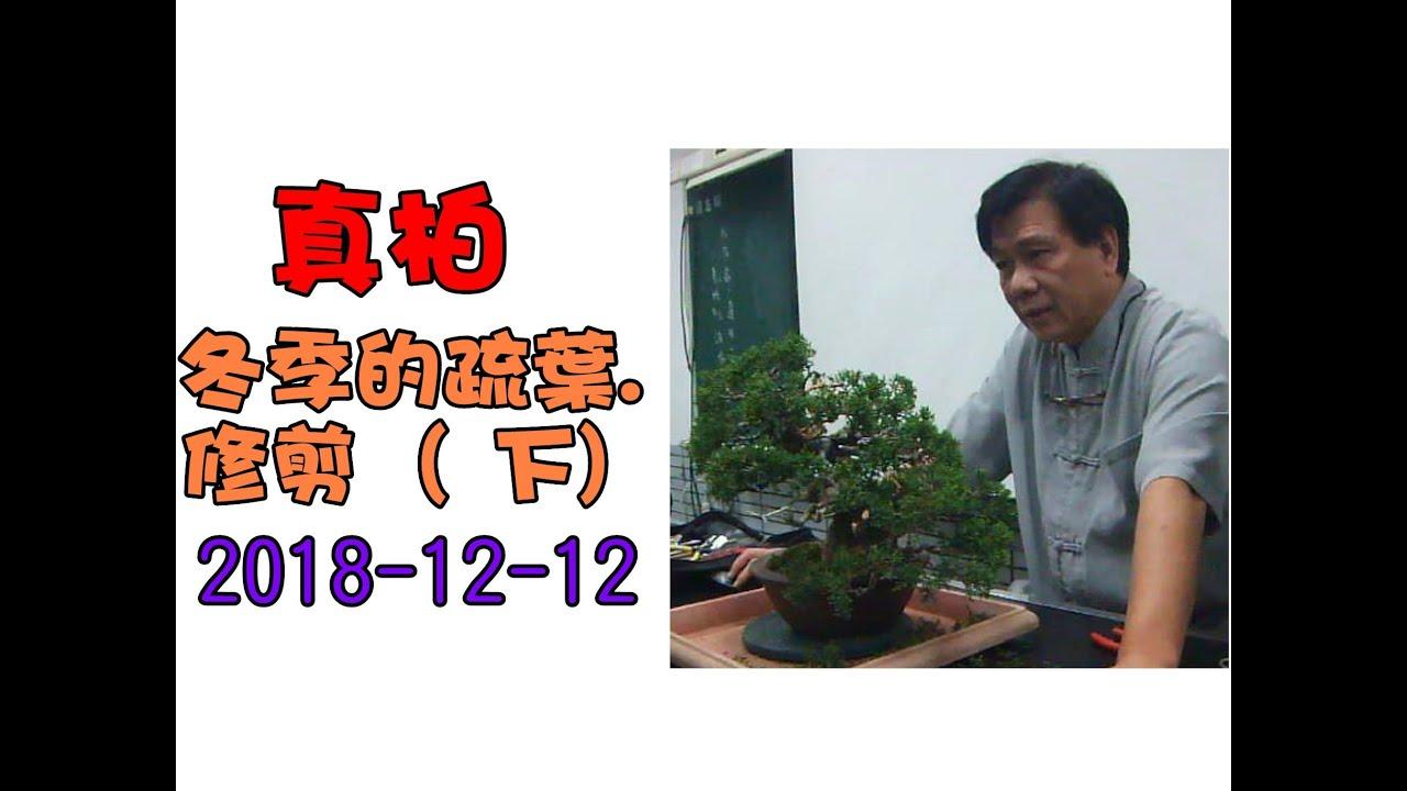 林慶祥盆景藝術創作教學團隊 諮詢請加入 Line:0936456168 - YouTube