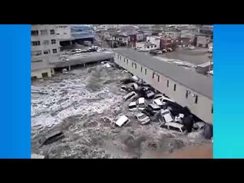 נזקי הסופה אירמה