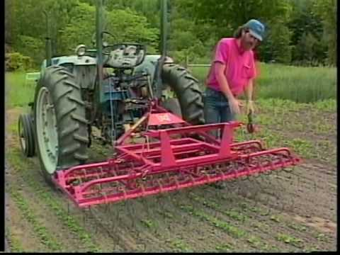 Weed-Control Machines - Fiddlehead Farm, Brownsville, VT