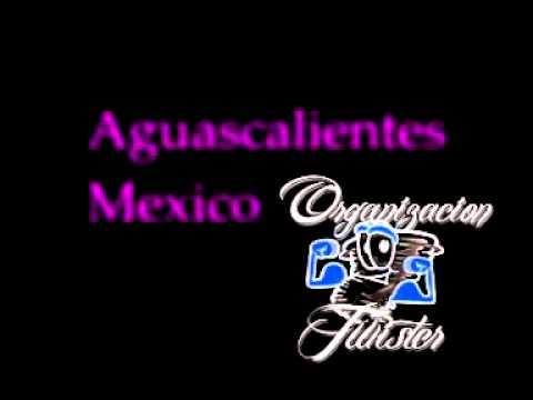 TWISTER RADIO AGUASCALIENTES 91.7 fm