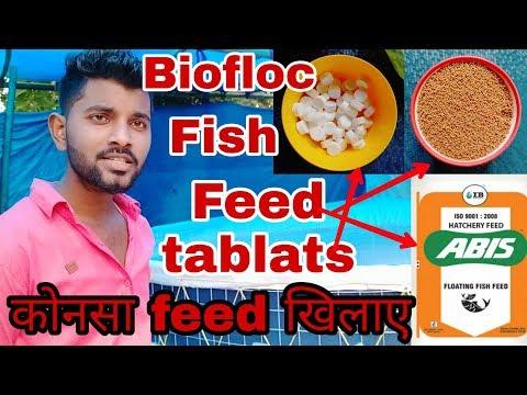 मछलियों को कोनसा Feed खिलाए || Biofloc Tank Ke Liye,fish Medicines, || Best Fish Feed For Biofloc