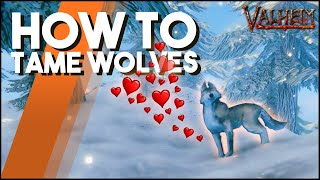 How To Tame WoĮves In Valheim! A QUICK & EASY Guide To Wolf Taming!