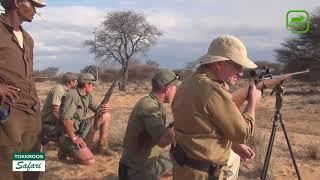 Охота на льва в ЮАР. Точные выстрелы.