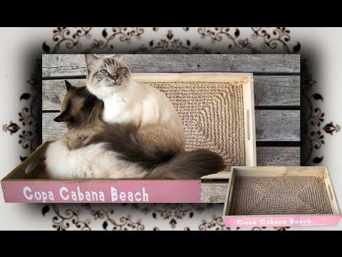 diy-😻-kratz-bett-für-katzen-|-scratcher-bed-for-cats
