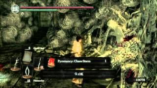 Dark Souls PS3 Humanity & Chaos Servant
