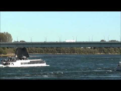 The Saint Lawrence River (fighting the currents)
