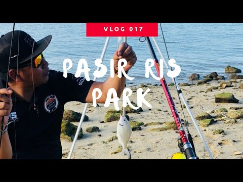 Pasir Ris Park SG - Family Fishing- VLOG 017  By (Padeepsea)