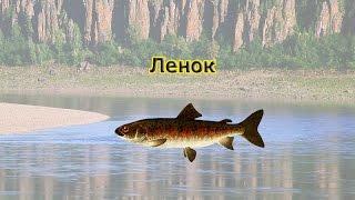 прокачка кармы и опыта в русской рыбалке 3 от 28 разряда
