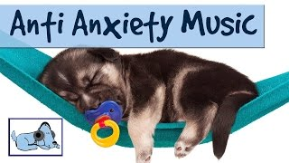 Relaxing Music for your Dog - Reduce Anxiety & Stress During Fireworks