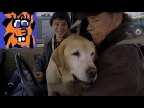 A Dog Named Christmas (2009) movie review - YouTube