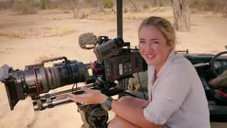African Lion Diary Big Cat Country  5⃣HollyWoods Held Hostage   Nature Documentary HD