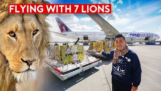 Special Rescue Flight - Flying With 7 Lions on Qatar Airways B777