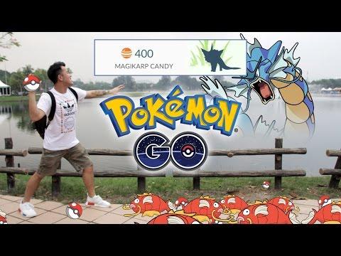 Farming 400 Magikarp Candies + 1 Rare Pokemon Find!