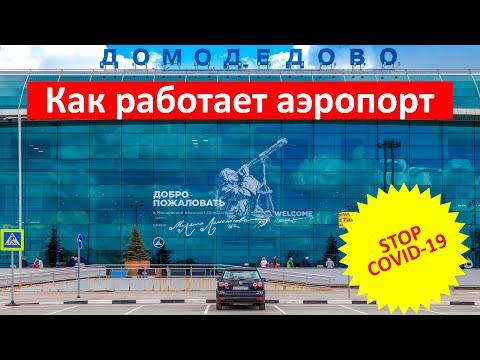 Как сейчас работает аэропорт Домодедово. Авиация восстанавливается