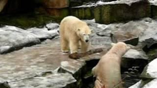 Knut & Gianna - Water & Ice - Fun!