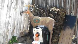 40 yrd shooting an apple of my babys head !!! with a compound bow and arrow using a martin onza3