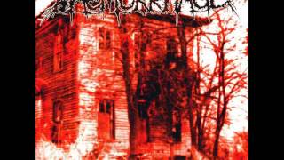 Haemorrhage - Morgue Sweet Home [Full Album]