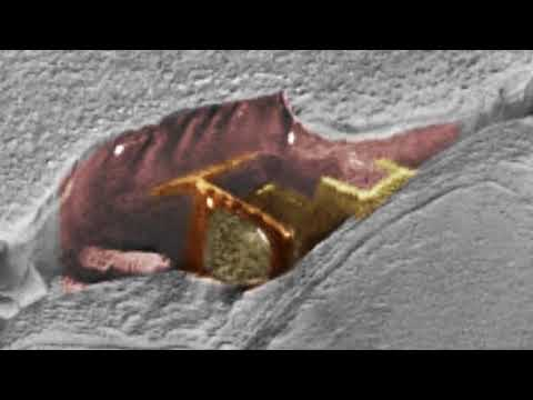 nouvel ordre mondial | Nobody Still Can Explain What Was Found On Mars! 2018