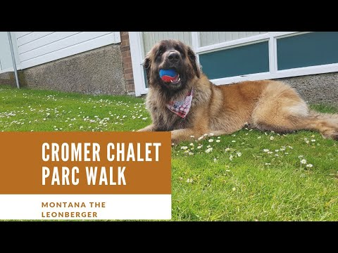 cromer chalet park walk 4K