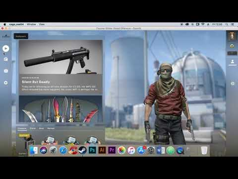 How To Fix Mouse Glich / Double Click On CS:GO MacOS