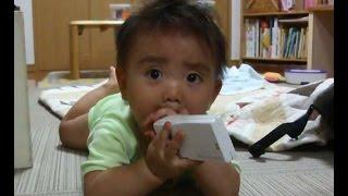 何でも食べちゃう赤ちゃん 最後の声がかわいい A Funny Baby Video.