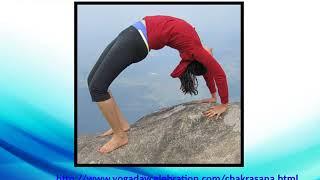 Yoga Day Celebration 2018 | Types Of Yoga