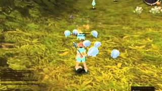 Mage - Sorcerer/Wizzard skills : Ragnarok Online 2 - LOTS, R-Care Test