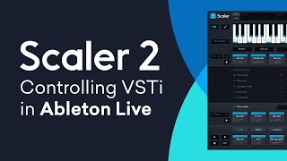 Scaler 2 | VSTi Routing in Ableton Live | Quick Tip Tutorial