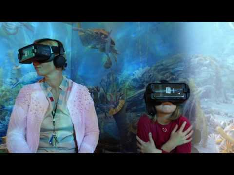 The Secrets of Ancient Sea - Exhibition and Virtual Reality Movie