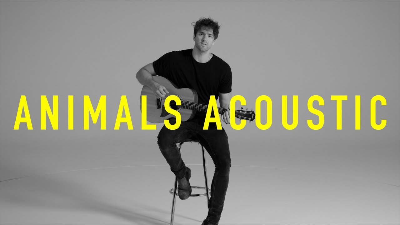 Lawson - Animals (Acoustic)