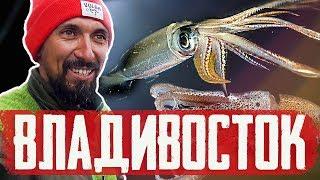Ловля КАЛЬМАРОВ во Владивостоке СТАРБЛОГ