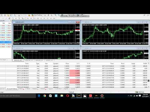 Forex Trading Fund Management 100% winning profit system 2018