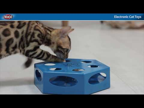 The Right Cat Activities with Cat Toys from TRIXIE Heimtierbedarf