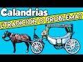 Calandrias, ¿tradición O Problema?