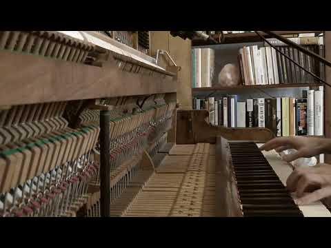 Sufjan Stevens - Death With Dignity (Piano Version by KLINGER)