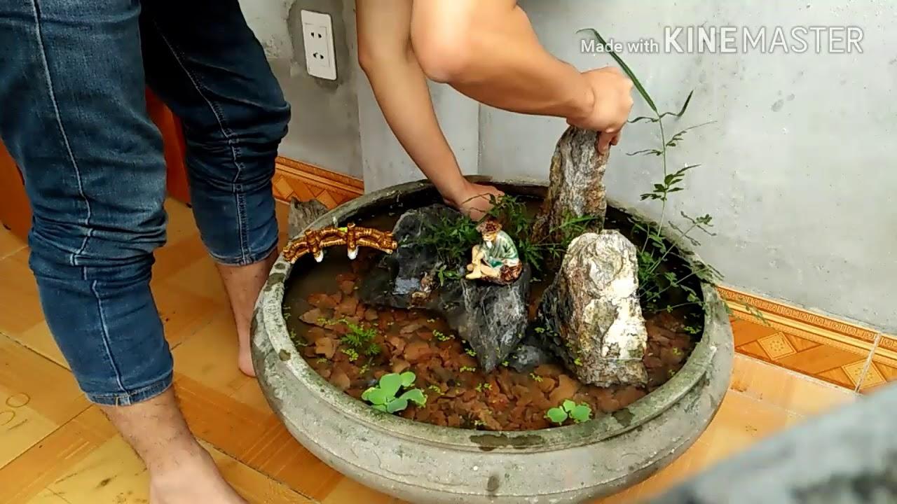 Setup bể cá cảnh thủy sinh đơn giản bằng chậu cây cảnh