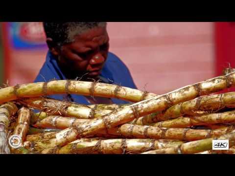 Dominica Portsmouth Market