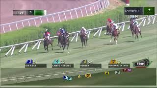 Vidéo de la course PMU PREMIO TANSANA