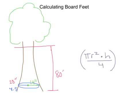 Calculating board feet youtube for How to calculate board feet in a tree