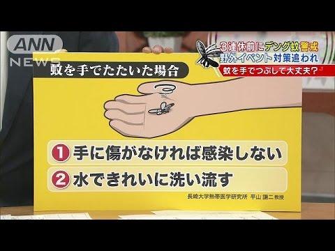 デング熱から身を守る 蚊に刺されないためには?(14/09/12)