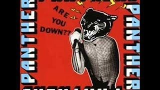 Watch Panthers Are You Down video