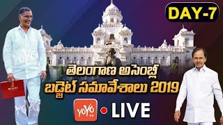 Telangana Assembly LIVE | Day-7 | Telangana Assembly Budget Session 2019 LIVE | KCR | YOYO TV LIVE
