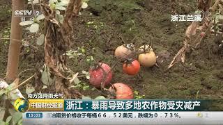 [中国财经报道]南方强降雨天气 浙江:暴雨导致多地农作物受灾减产| CCTV财经