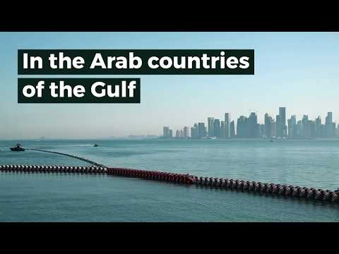 Switching to renewable energy in the Gulf is good for the ec