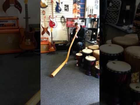 Longmont Didgeridoo