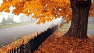 Осенняя мелодия thumbnail