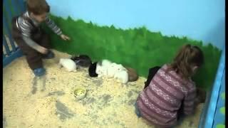 """Контактный зоопарк """" Мой маленький мир"""" город Обнинск"""