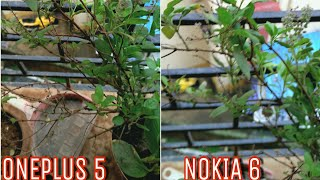oneplus 5 vs nokia 6 camera comparison   nokia 6 camera review   oneplus 5 camera review