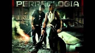 Alexis Y Fido - Energia (Perreologia) Reggaeton 2011 Letra